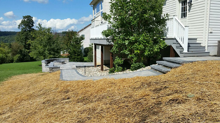 new stone path and steps