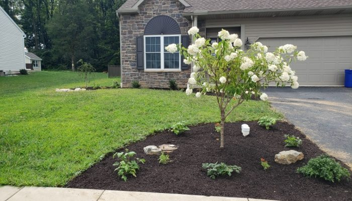 AST – flowerbed at end of driveway